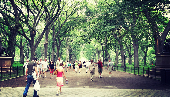 800px-The_Mall_&_Literary_Walk,_Central_Park,_Manhattan,_NYC