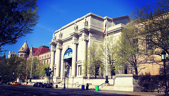 MDNY_800px-USA-NYC-American_Museum_of_Natural_History